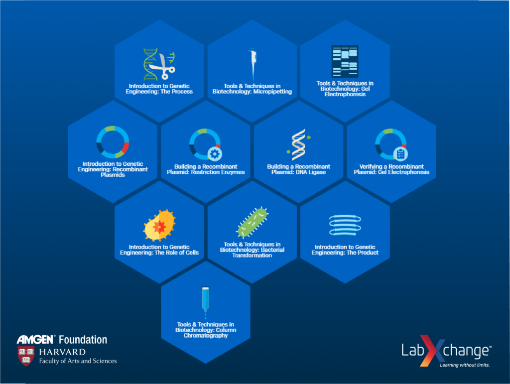 A screenshot of LabXchange's cluster on Foundational Concepts and Techniques in Biotechnology