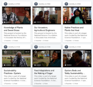 Examples of videos created by Visibility in STEM